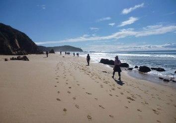 Beach-walk-PW