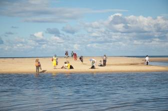 FSC-beach-scene