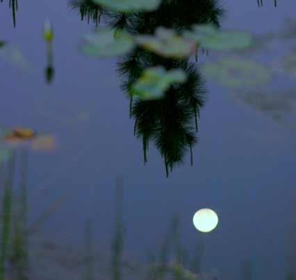 moon-water-3
